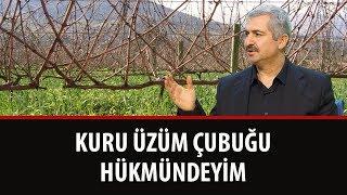 Dr. Burhan Sabaz - Kuru Üzüm Çubuğu Hükmündeyim...!