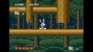 Mega Drive Longplay [251] Tiny Toon Adventure: Buster's Hidden Treasure