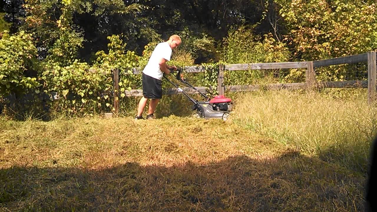 Honda hrb 217 push mower cutting 1 foot tall grass youtube for Like long grasses