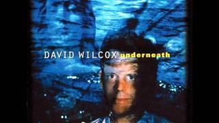 Vídeo 97 de David Wilcox