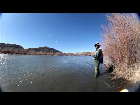 Midge dry fly fishing jumping trout San Juan River eos 650D/T4i