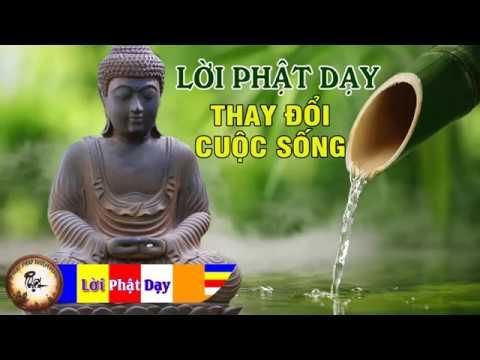 Nghe Lời Phật Dạy Mỗi Đêm Thay Đổi Cuộc Sống Phước Đức May Mắn Luôn Tìm Đến | Phật Pháp Nhiệm Màu thumbnail