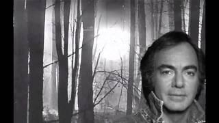 Watch Neil Diamond Shame video