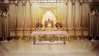SUNDAY MASS SINHALA - 09 08 2020