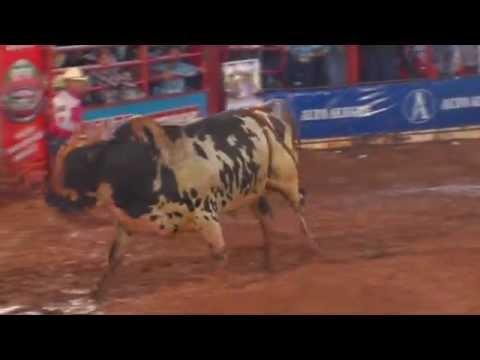 Final Rodeio De Colorado - PR
