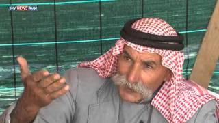 قضية بدو النقب تعود إلى الواجهة