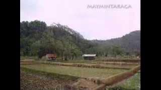 Download Lagu GUBUK BAMBU, Meggy Z. Gratis STAFABAND
