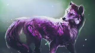Anime Wolves ~ Listen to your heart