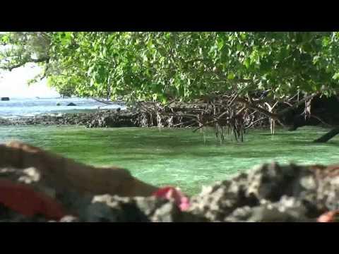 Exploring The Solomon Islands