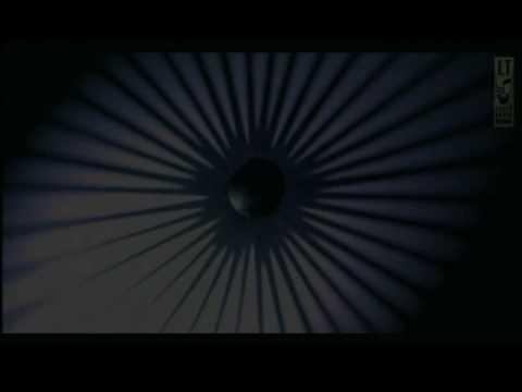 """LEAFLESS TREE - """"The Last Walk"""""""