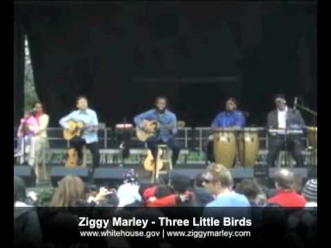 Ziggy Marley - Three Little Birds (Live White House Easter Egg Roll)
