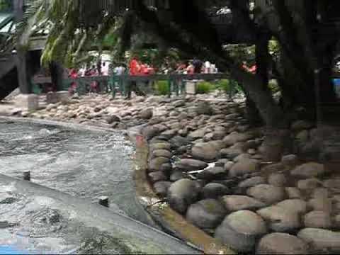 Costa Rica, Subida a Juegos de Agua, Parque Nacional de Diversiones