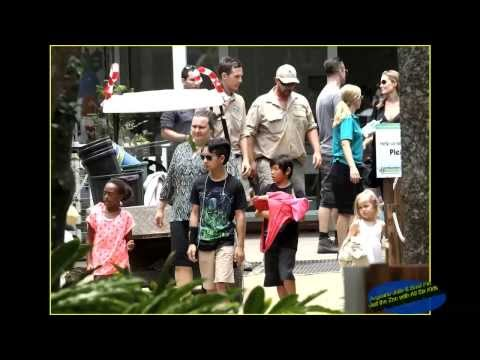 Angelina Jolie & Brad Pitt Visit the Zoo with All Six Kids