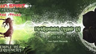 download lagu Own Spirit 2017 By Paradigmantra Dj Set gratis