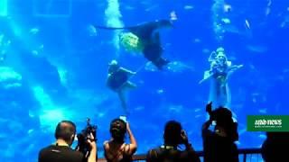 Underwater Lunar New Year celebration in Singapore