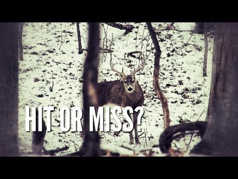 Did he or didn't he? | Ohio Whitetail Hunt