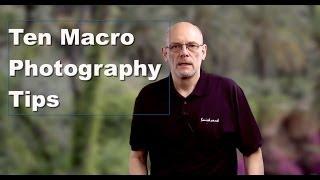 10 Macro Photography Tips