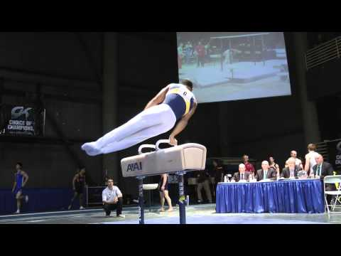 Stacey Ervin - Pommel Horse - 2012 Winter Cup Finals