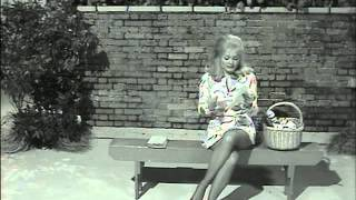 Benny Hilll   skirts and legs 2