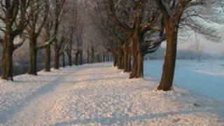 Watch Carpenters Winter Wonderland video