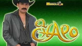 Vídeo 80 de El Chapo De Sinaloa