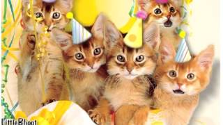 Happy Birthday ♫ Meaw ♪