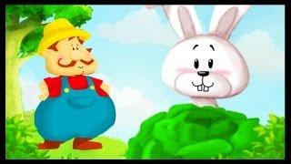 "Mon petit lapin ""Cherchez moi coucou coucou"""