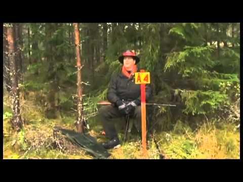 Anders Borg skjuter en räv