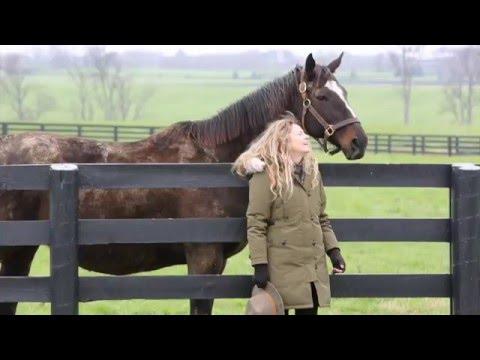Zenyatta Foal Watch 2016