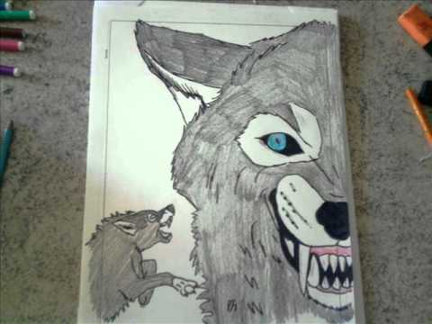 i miei disegni,metallica..pantera e animali