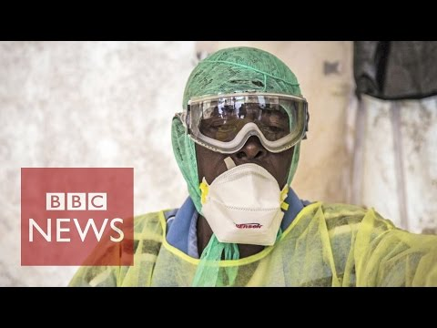 6 surprising stats about Ebola virus - BBC News