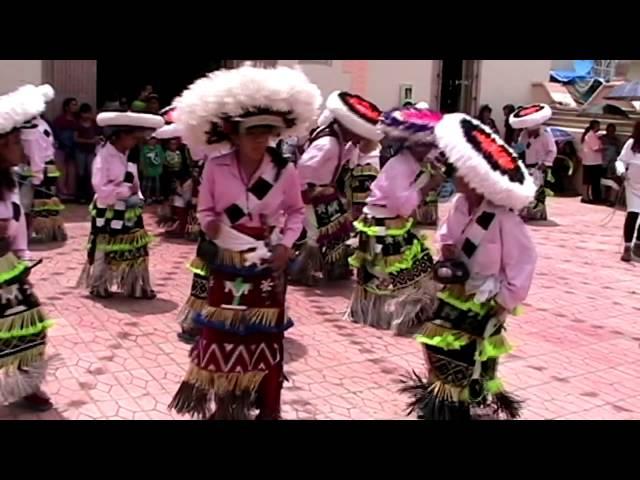 san pedro piedra gorda zacatecas 2011