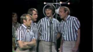 Watch Beach Boys Magic Transistor Radio video