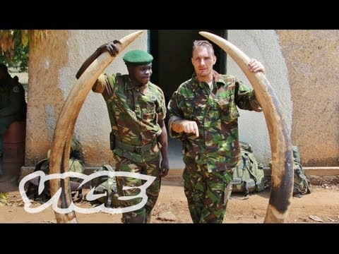 Elephant Poachers in Kenya