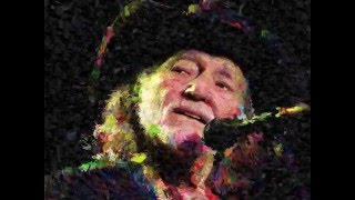 Watch Willie Nelson If You Could See What