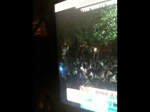 Osama Bin Laden Dead: Guy Falls From Tree