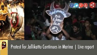 Protest for Jallikattu Continues in Marina | Live report