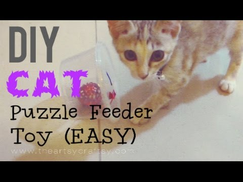 Diy Cat Toys Pinterest Diy Easy Cat Puzzle Feeder Toy