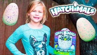 The Assistant Goes on a Hatchimals Surprise Hunt with PJ Masks