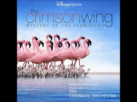 The Cinematic Orchestra - The Exodus