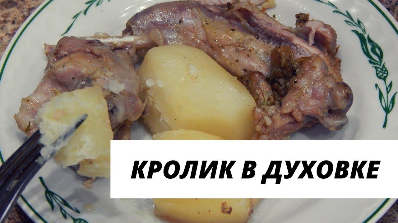 Рецепт приготовления кролика в домашней условиях 526