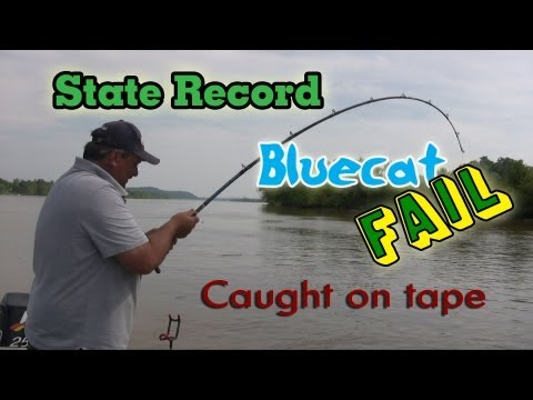 West Virginia Blue catfish State Record Fail