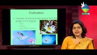 Lecture Room | Biology | Ishvani Television |
