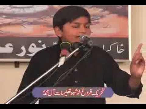 Tribute To Allama Nasir Abbas ,shaheed By Haidar Abbas Gondal Majlis 27 Muharam 2014 Chak 107aliali video