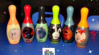 Fun with The Secrete Life of Pets Bowling set