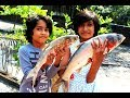 Kids picnic fish curry recipe | Delicious village food big fish curry thumbnail