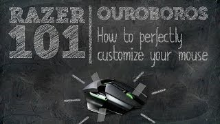 How to Perfectly Customize Your Ouroboros | Razer 101