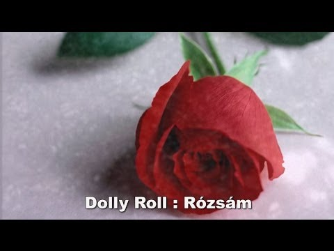 Dolly Roll -  Rózsám