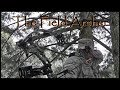 BOWHUNTING: Second Deer Hunt With The Mamba Air TF MP3