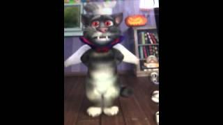 Tom O Gato Falante Cantando Anitta -zen